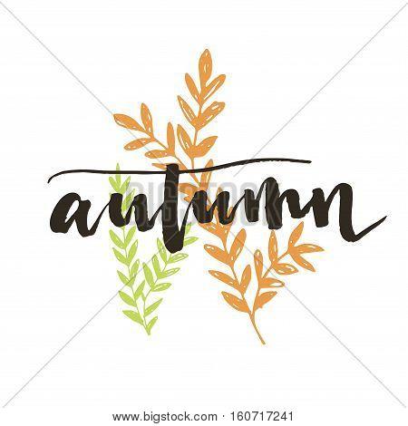Autumn. Modern Brush Calligraphy. Handwritten Ink Lettering.