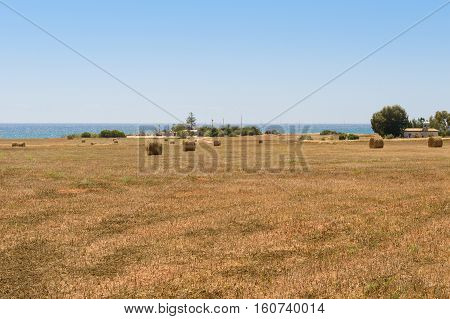 April 28 2014: farm tucked away in a stack of hay on the shore of the Mediterranean Sea. Near Ayia Napa. Cyprus.