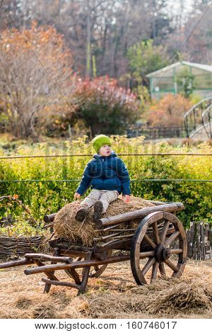 Old-fashioned Little Boy Sitting At A Vintage Wooden Carriage