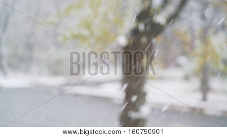 snow falling in slow motion with blurred trees on background, 4k photo