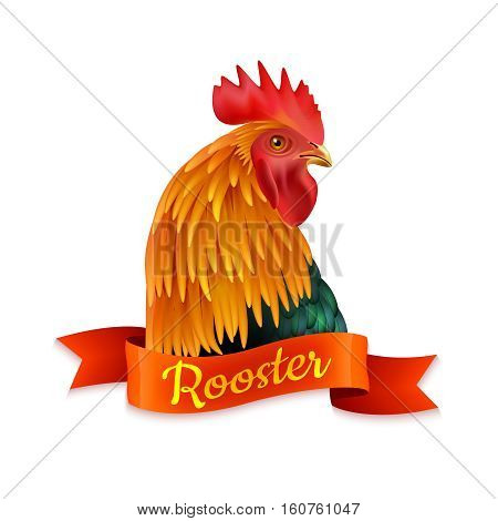 Classic red country rooster head turned aside closup image colorful picture with ribbon text vector illustration