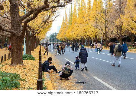 Ginkgo Avenue, Tokyo