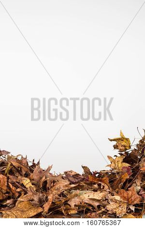 Background of piled dried autumn leaves in vertical orientation and copy space. poster