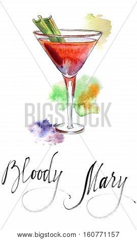 Wineglass of cocktail Bloody Mary with green celery hand drawn - watercolor Illustration