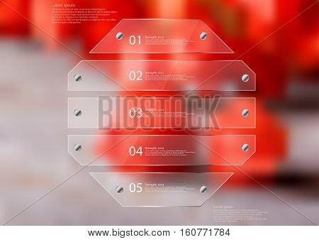 Illustration infographic template with motif of glass octagon horizontally divided to five sections. Blurred photo with natural motif is used as background with several red physalis blooms.