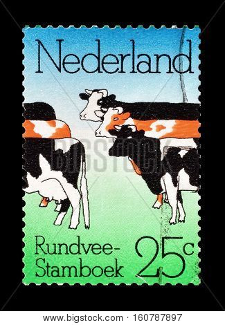 NETHERLANDS - CIRCA 1974 : Cancelled stamp printed by Netherlands, that shows Cattle.
