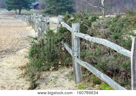 Wooden fence and sand dunes  at Frensham Common in Surrey