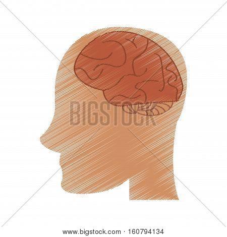 drawing profile head brain idea imagination vector illustration eps 10