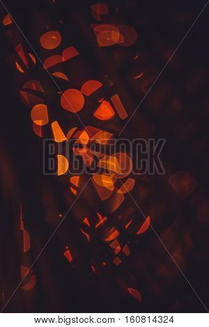 Night city lights bokeh background,Festive background with natural plam plant's leaf effect, bokeh and bright golden lights.