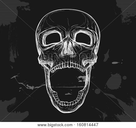 skull with opened jaw on black background vector illustration