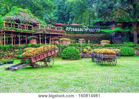 Garden Flowers, Mae Fah Luang Garden Locate On Doi Tung In Chiang Rai,thailand.