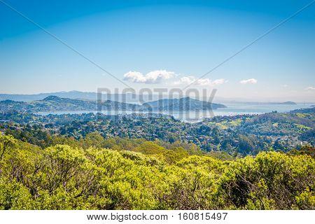 Vistapoint Montain Nature In Mount Tamalpais, California, Eua