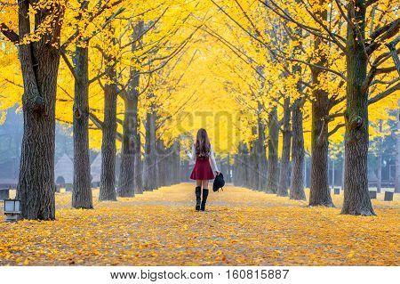 Beautiful Girl With Yellow Leaves In Nami Island, Korea.