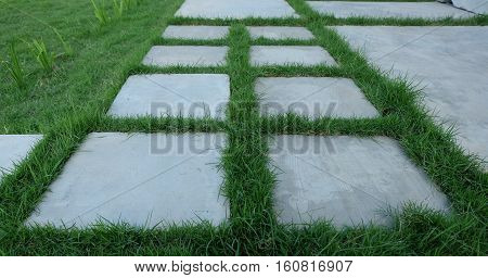 Walkway paved with concrete squares, walkways lawn.