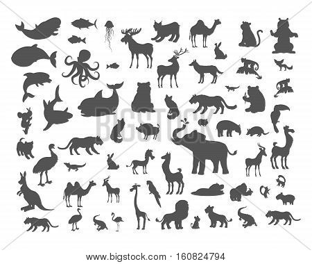 Set of animals silhouettes. Mammals, birds, fish, reptiles, amphibia, bats colection. Fauna of the world concept. Animals of North and South America, Europe, Africa, Asia Australia Vector icons