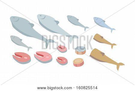 Set of fresh fish. Salmon steak fish. Fresh organic seafood vector illustration. Seafood products set with steak. Raw slices. Marine fauna set of aquatic animals. Fish shop, ocean or sea fish