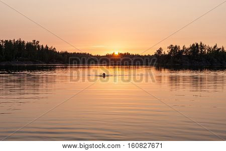 woman swimming in the lake at sunset