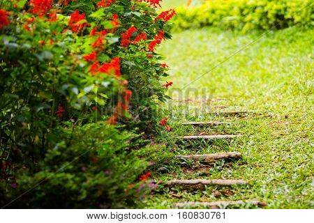 Stone steps in the garden. Red flowers
