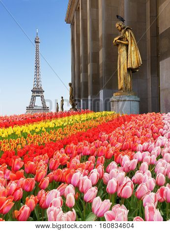 eiffel tour and statues of Trocadero garden, dating from the 1930s, spring in Paris, France