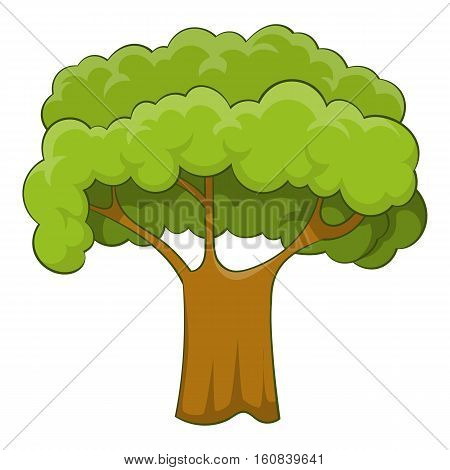 Old tree icon. Cartoon illustration of old tree vector icon for web