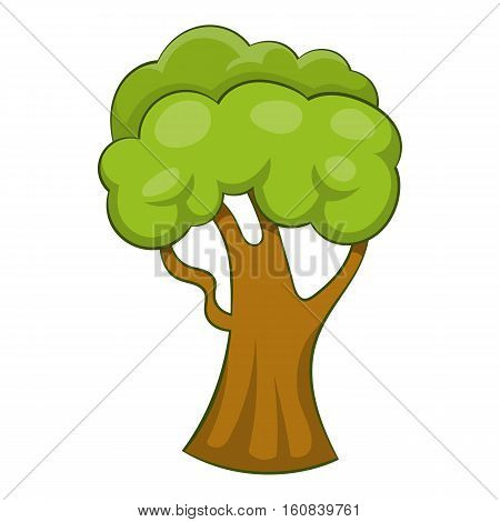 Forest tree icon. Cartoon illustration of forest tree vector icon for web