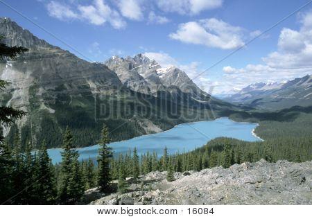 Turquoise colored Peyto Lake in Jasper National Park, Alberta, Canada poster