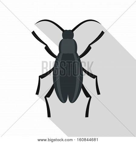 Gray beetle icon. Flat illustration of gray beetle vector icon for web