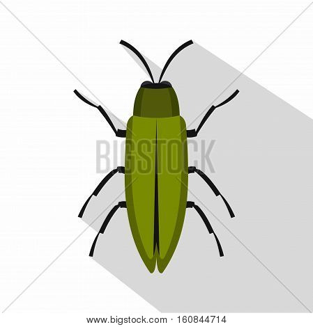 Green beetle icon. Flat illustration of green beetle vector icon for web