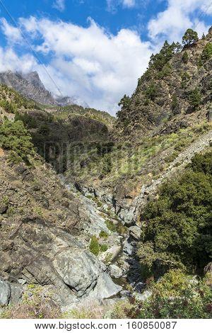 """Impressive canyon of fear """"Barranco de Las Angustias"""" in La Palma canary islands."""