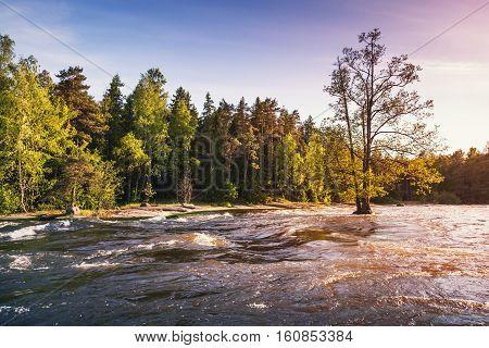 Langinkoski, Natural Photo Background, Summer