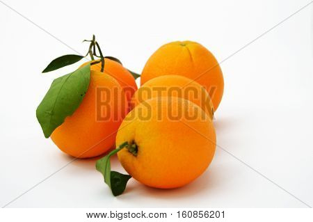 Bigstock orange paintings for advertising agencies and design companies