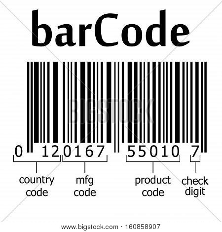 decoding EAN-13 barcode, name bar code element, vector