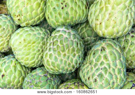 Sweet custard apple, Sweet fruit - Stock Image