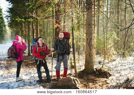 A collective portrait of male tourists in spring forest