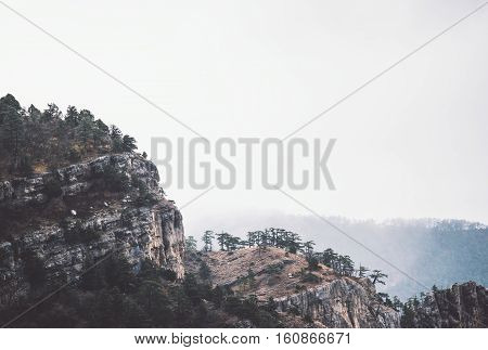 Foggy rocky Mountains cliff with Forest Landscape background Travel serene scenic aerial view moody weather