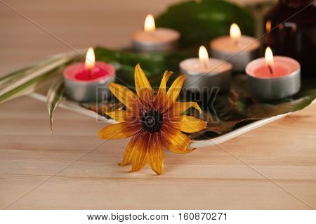 scened  burn candles with herbs and massage oil on wood background
