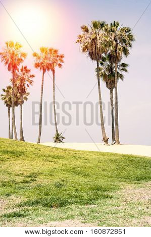 Sunny Day On The Beach Of Venice, California. Background.