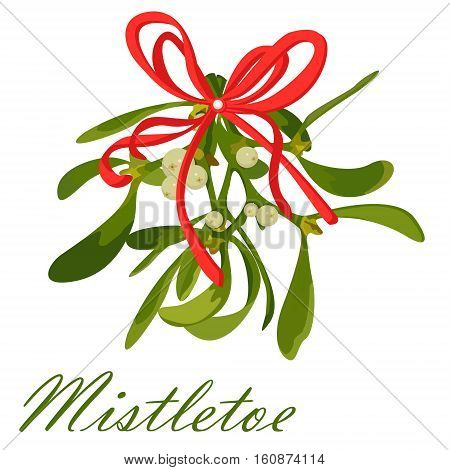Mistletoe branch berries leaves Christmas xmas holiday symbol bow festive ribbon under kissing kiss. Vector closeup beautiful color sign signboard poster square illustration isolated white background