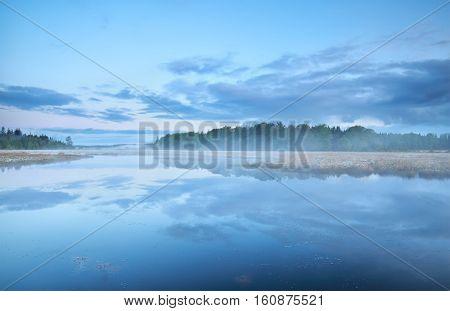 misty morning on wild forest lake Netherlands