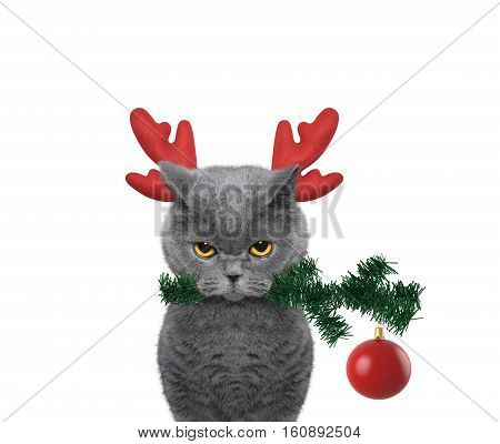 Cute santa cat in reindeer antlers with fir-tree and xmas ball -- isolated on white