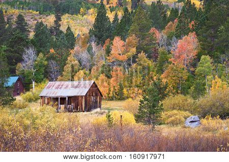 Rustic Barn With Fall Colors
