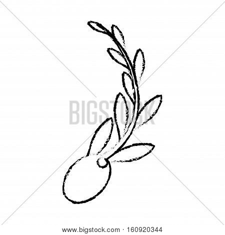 olive and branch icon image vector illustraton design