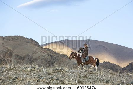 Bayan Ulgii Mongolia October 2nd 2015: Old eagle hunter with his Altai Golden Eagle on his przewalski horse