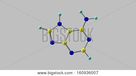 Adenine is one of the two purine nucleobases the other is guanine used in forming nucleotides of the nucleic acids. 3d illustration