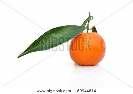 clementine with leaf isolated on white background