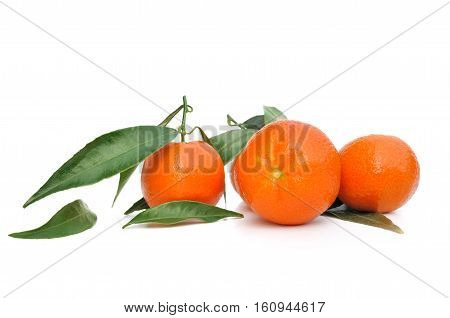 clementines with leaf isolated on white background