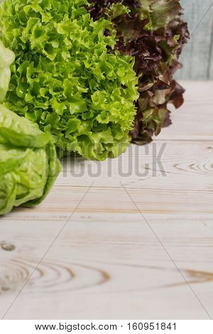 Variety of green and red fresh lettuce salad leaves - healthy low calorie food