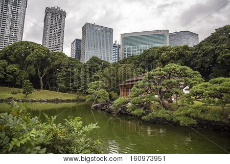 TOKYO, JAPAN - OCTOBER 3, 2016: View at modern skyscrapers and Hamarikyu Gardens in Tokyo. It is a public park opened April 1 1946.