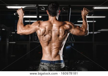 Back Muscle Man's Back.