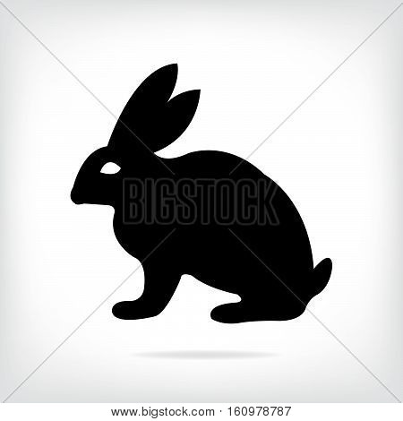 Vector image of an rabbit on grey background